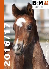 b m gesamtkatalog pferde 2016 by b m haus und agrotech ag