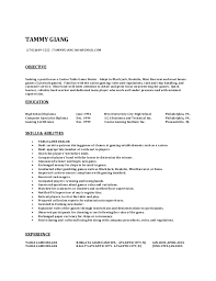 Sample Resume For Heavy Equipment Operator by Tammy Resume 2