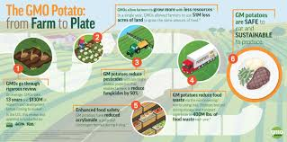from farm to table farm to table axis seed