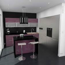 meuble cuisine aubergine charmant meuble cuisine aubergine avec exceptional cuisine avec
