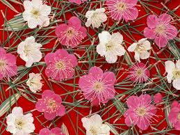 Japanese Flower Artwork - japanese plum flowers background 21 wallcoo net