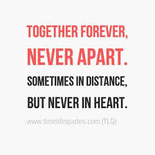 Cute Love Meme - amazing 210 best cute love quotes for her love quotes for him
