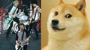 What Is Doge Meme - 5 seconds of summer just revived the doge meme for some strange reason