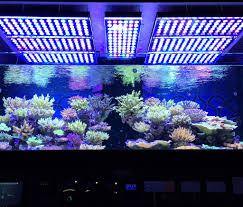 led reef aquarium lighting atlantik v3 wifi led reef aquarium light fresh n marine