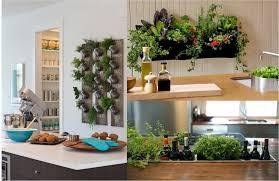 indoor kitchen gardens zandalus net