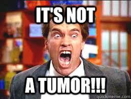 Tumor Meme - it s not a tumor kindergarten cop quickmeme