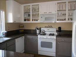 Cabinet For Small Kitchen by Best Paint Colors For Small Kitchens Amazing Sharp Home Design