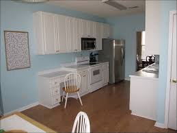 Kitchen Paint Colors With Dark Wood Cabinets Kitchen Dark Kitchen Cabinets With Dark Wood Floors Pictures
