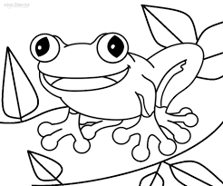 toad and fly coloring page inside brilliant pages draw a for