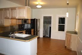 cabinet suspended kitchen cabinets best ikea kitchen ideas