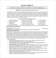 Marketing Manager Resume Sample Pdf by Seo Executive Resume Template U2013 12 Free Word Excel Pdf Format