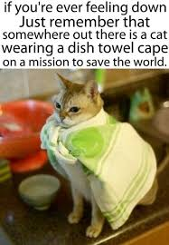 You Re A Towel Meme - wholesome memes will remind you to love life thechive