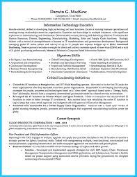 Data Warehouse Resume Example Cto Resume Examples