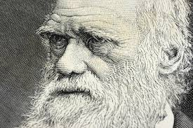 8 people who inspired charles darwin