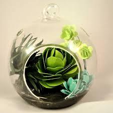 paper succulent hanging glass terrarium createncraft