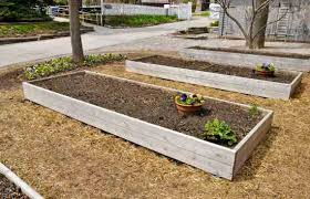 raised bed gardening plan your vegetables and herbs in fall