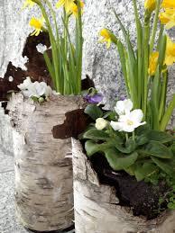 mud season in maine yields flower arrangements gluten