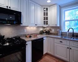 Kitchen Design With Black Appliances Kitchen Design Black Appliances With Paprika And Corner Flowerpot