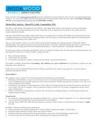 custom rhetorical analysis essay writer services uk essay of