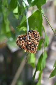 bird seed ornaments happy family