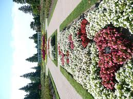 Niagara Botanical Garden Niagara Parks Botanical Gardens Nickys Garden