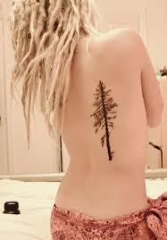 birch tree on back