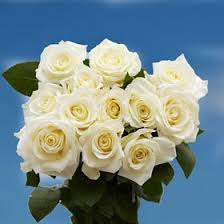 flower deals cheap send white roses find send white roses deals on line at