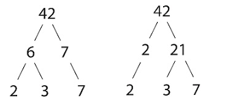 maths wrap how to work out the hcf and lcm using factor trees