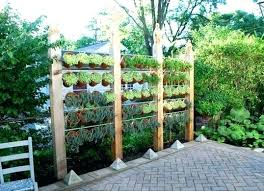 Garden Privacy Ideas Best Plant For Privacy Screen Garden Privacy Ideas Thin