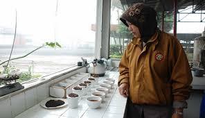 Teh Kayu Aro berkunjung ke pabrik teh kayu aro travel tempo co