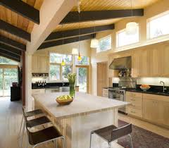 Mid Century Modern Kitchen by Mid Century Modern Kitchen Design Cool Ways To Organize Mid