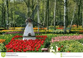 garden windmill royalty free stock photo image 25834985