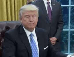 Animated Meme Maker - trump gif generator will let you make everything illegal bgr