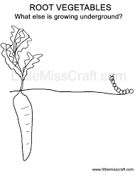 free printable doodle coloring page root vegetables growing