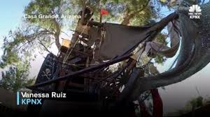 man builds disney inspired pirate ship treehouse in backyard