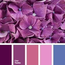 lilac color lilac and dark blue color palette ideas
