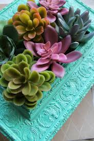 diy vertical gardens with succulents tips and hints home dezign