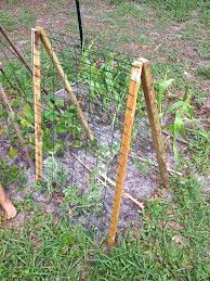 diy watermelon trellis