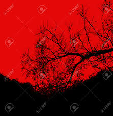 halloween silhouette background silhouette dead tree background for halloween or scary photo