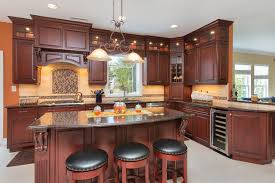 Kitchen Appliance Cabinets Angled Glass Corner Cabinet With Appliance Garage Traditional