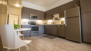 lumina boutique loft living for lease in lohi denver