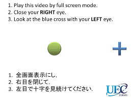 Blind Spot Left Eye Demonstration To