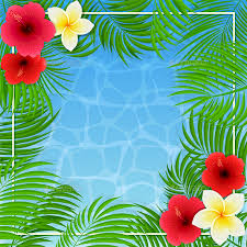Hawaiian Flowers And Plants - hawaiian flowers and palm leaves on water background by losw
