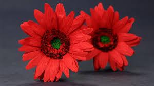 Paper Flowers Video - paper flowers duplex paper gerbera daisy flower craft youtube