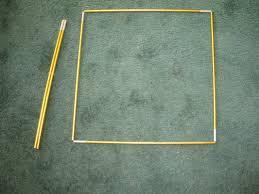 Meters Squared by Quadrat Plot 5 Meter Square Yukonenvirothon