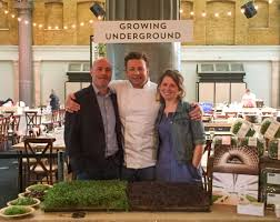 jamie oliver u0027s uk ceo cook off growing underground