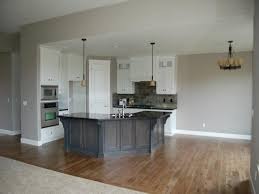 gray kitchen white cabinets granite countertops in kitchens with white cabinets the best