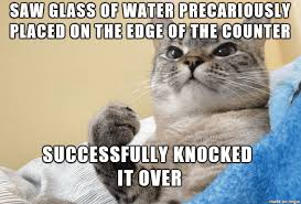 Crazy Cat Memes - 27 cat memes that are way too funny for words sayingimages com
