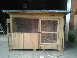 starting a wooden pallet coop backyard chickens