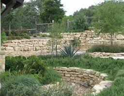 texas hill country xeriscaping grows landscaping company san